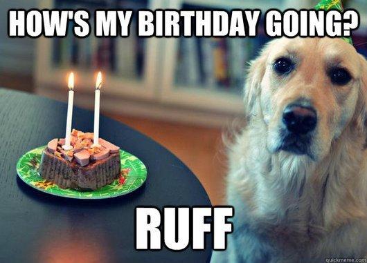 Hows-my-birthday-going-ruff-Sad-Meme